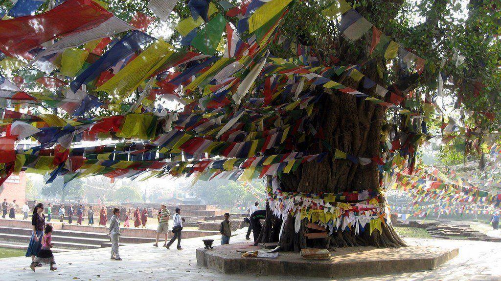Prayer Flag Lumbini