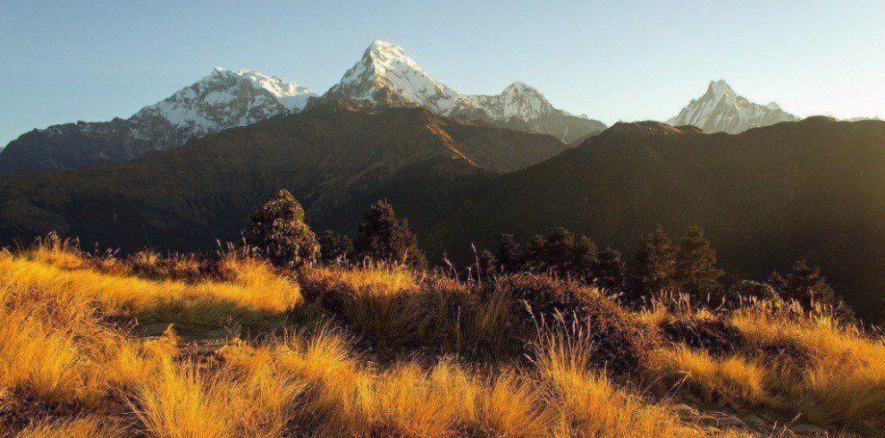 5 days short trek in annapurna, Poon Hill Trek