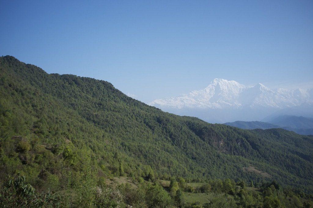 Panchase Trekking