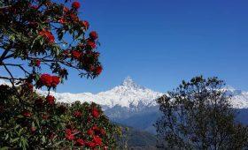 best 1 day treks in Nepal