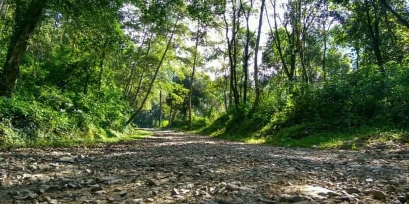 Phulchoki Hike